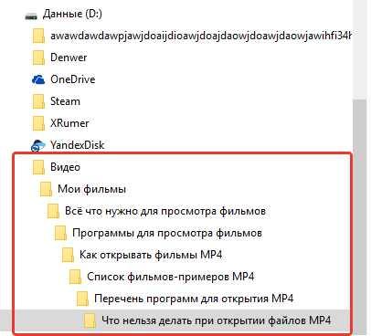 раскрутка сайтов в ленинградской области